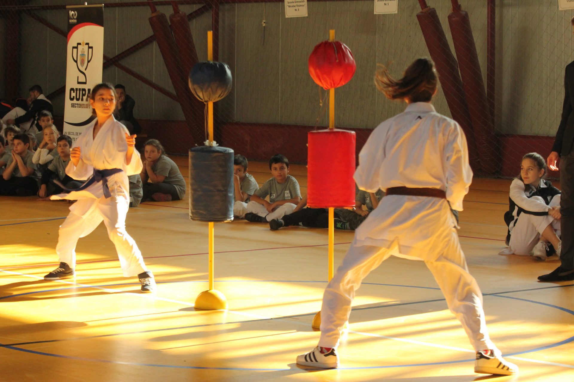 TURNEU FINAL KARATE